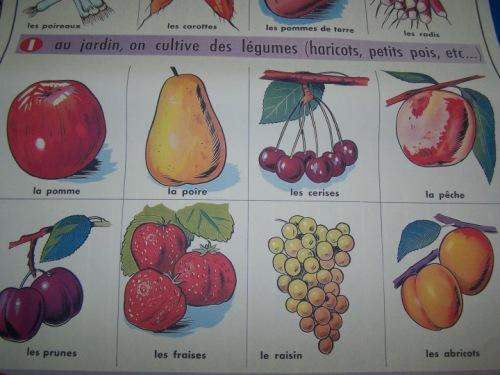 frenchfruit